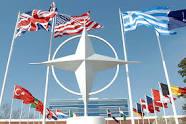 Трактористы-террористы окружают НАТО. Путин меняет официальную позицию