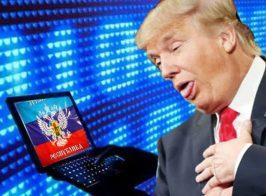 «Взломать Дональда Трампа»: на допросе в МГБ ЛНР луганский блогер рассказал о тайном задании спец.служб