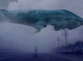 «Синий Кит» добрался до Киева. Подростки выполняют опасные задание и готовятся к суициду