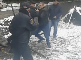В Украине назревает международный скандал. Европейский инвестор пострадал от действий лесной мафии